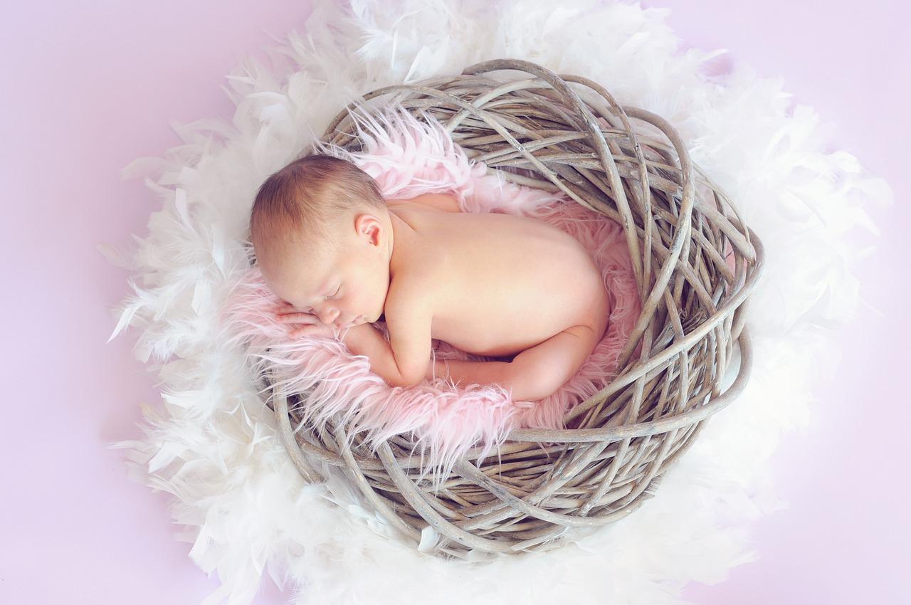 Baby Schlafen Flauschig Nest