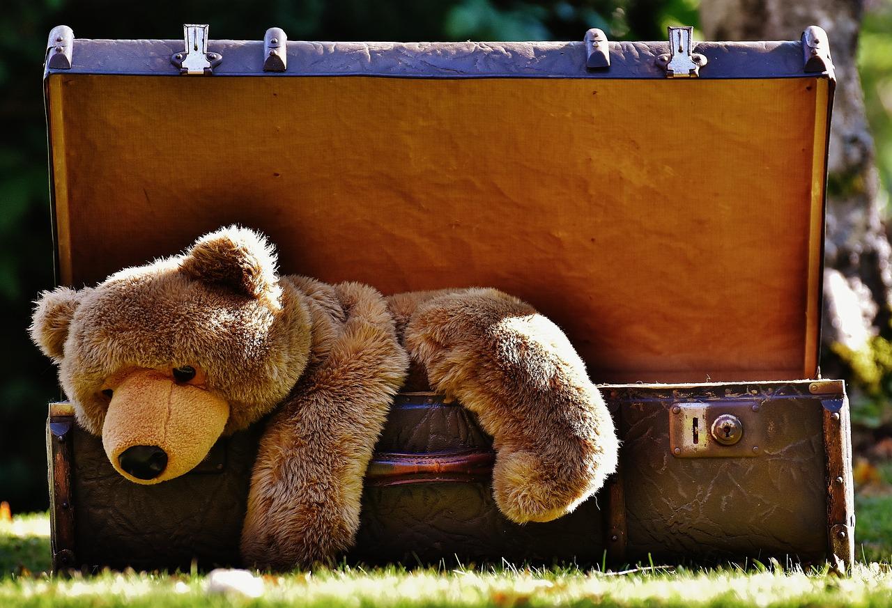 Teddybär Plüschtier im Koffer