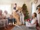 Riesen Teddy Bären sind die Lösung für die ganze Familie